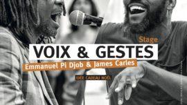 2020-04-06-11 stage VOIX_GESTES ST GUINOUX 2020 Emmanuel Pi Djob et James Carles