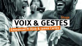 2021-05-04 STAGE VOIX GESTES ST GUINOUX Pi Djob et James Carlès